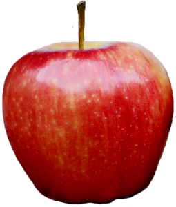apple_png12429